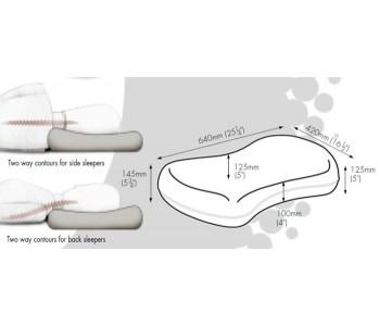 Dentons Multi Profile Contoured Pillow