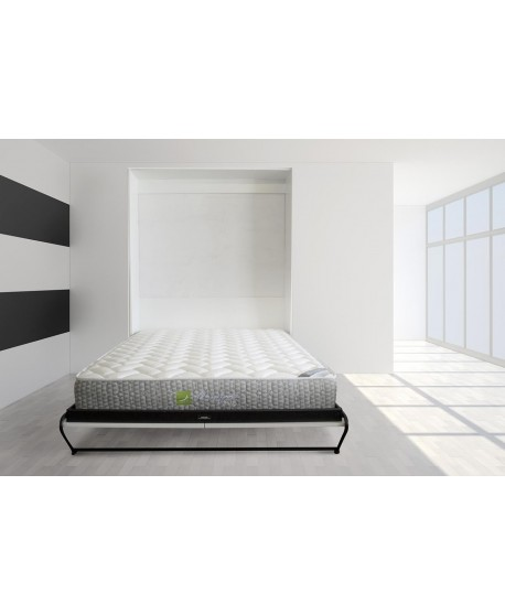 Custom Space Saver Wall Bed