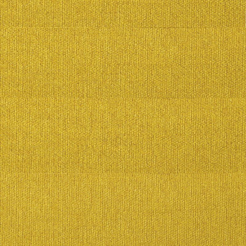 554-Soft-Mustard-Flower-2019