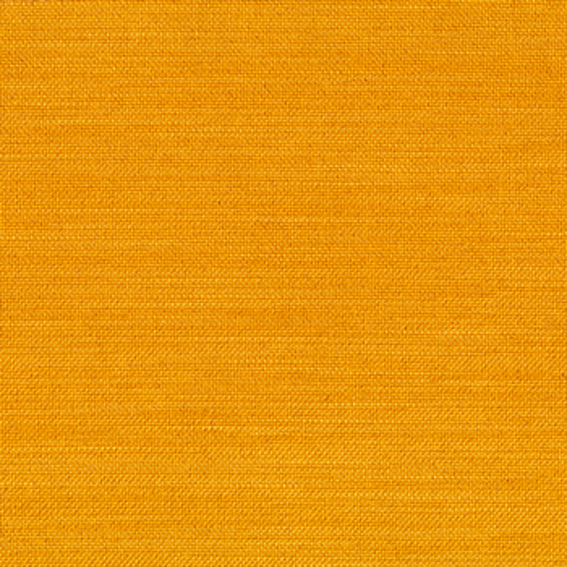 507-Elegance-Burned-Curry-2021